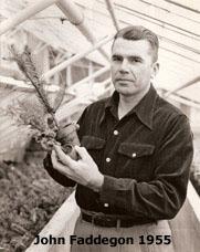 Cornelius Jan (John) Faddegon (1920-2005)